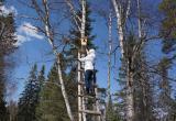 Пернатые обитатели саткинского национального парка отметили новоселье