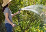 «Полив в рамках закона»: скоро в Сатке начнутся массовые проверки летних водоводов