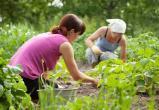 Что подсказывает лунный календарь садоводам Саткинского района?