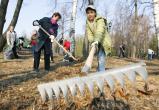 Саткинцев приглашают к участию во всероссийском экологическом турнире «Кубок Чистоты»