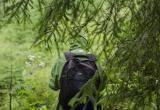 «Пошёл за черемшой и заблудился»: спасатели помогли мужчине выбраться из леса в Саткинском районе