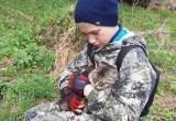 «Мама, это же Муся!»: для «дикой» кошки из парка «Зюраткуль» нашлись хозяева