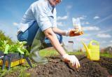 Что следует сделать садоводам Саткинского района на следующей неделе