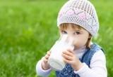 «Пейте, дети... Или не пейте?!»: саткинцев предупреждают о риске заражения клещевым энцефалитом
