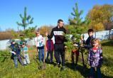 Жители Саткинского района присоединились к Всероссийской акции «Живи, лес!»
