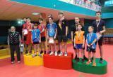 Саткинские теннисисты завоевали призовые места на областной Спартакиаде