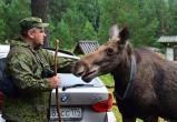 Директор саткинского национального парка рассказал о перспективах развития «Зюраткуля»
