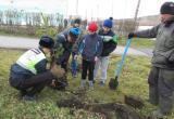 «И посадить… дерево»: саткинские полицейские приняли участие в акции «Лес – это жизнь»