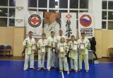 Саткинские каратисты привезли медали с областного турнира