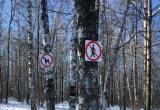 Жителей Западного района в Сатке возмутило появление табличек на лыжне в лесу